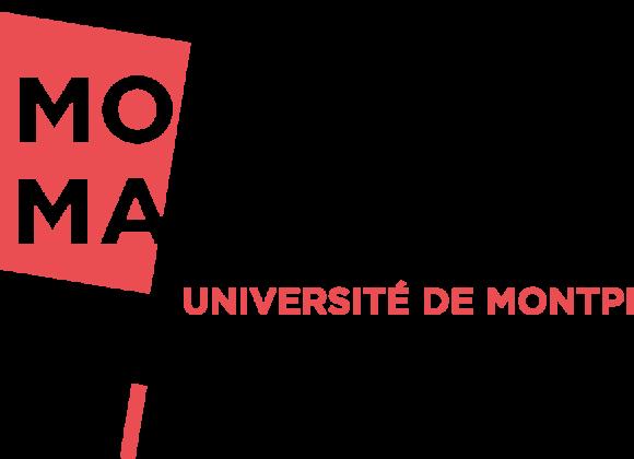 MOMA INSTITUT MONTPELLIER MANAGEMENT recherche CHARGÉ DE PROJETS WEB (H/F)CDD