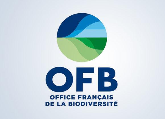 L'OFB recrute un(e) chargé(e) de comm externe (CDD de 6 mois)